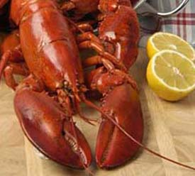 Cooked Lobster at The Lobster Pot Restaurant Dublin Ireland